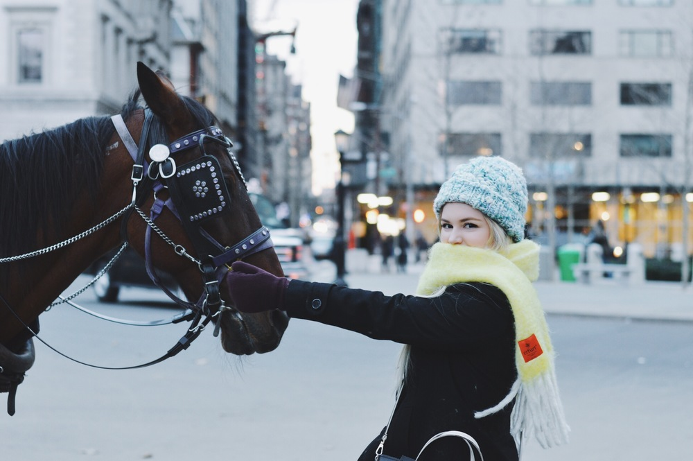 Wandering around central park and happened to meet a famous horse. This guy was in a new film coming up staring Kirsten Stuart. The owner showed us photos and it was a total catch. The horse was sweet too ;) (Scar & Hat are both form Anthropologie // Gloves from Lulu Lemon)