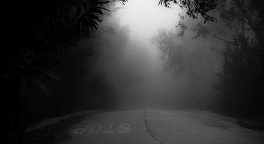 Hollywood Hills Foggy Road.jpg