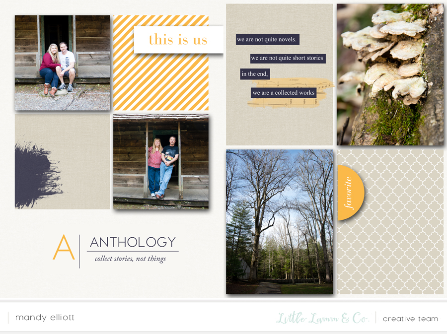 6x8 Digital Pocket Page Layout by Turquoise Avenue featuring the Anthology collection by Little Lamm & Co.