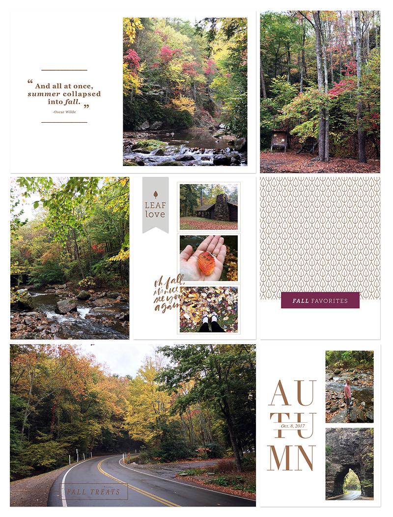 TQ_AutumnVibes_PaisleePress.jpg