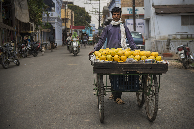 Mango Dealer