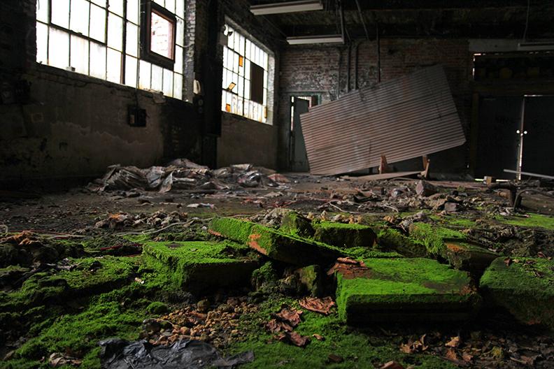 Moss Bricks