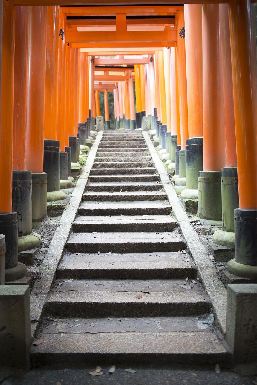 Fushimi Inari Steps.jpg