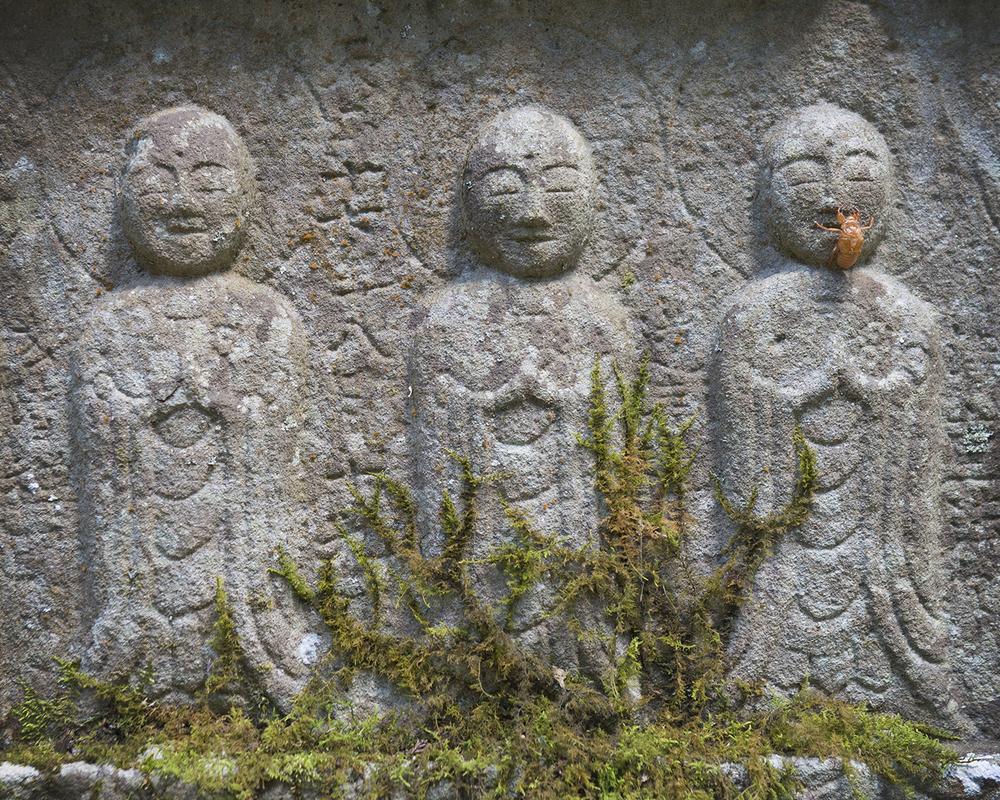 3 Wise Men (V).jpg