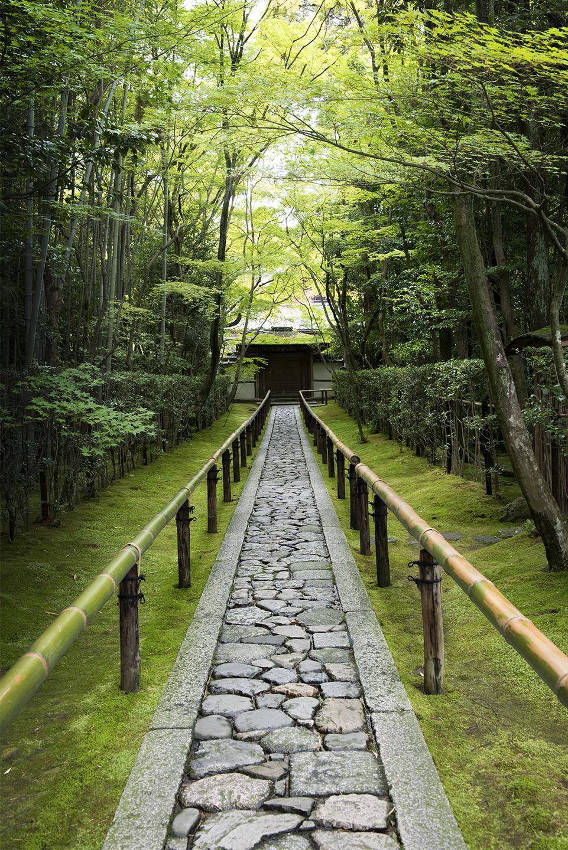 Daitokuji Path (V).jpg