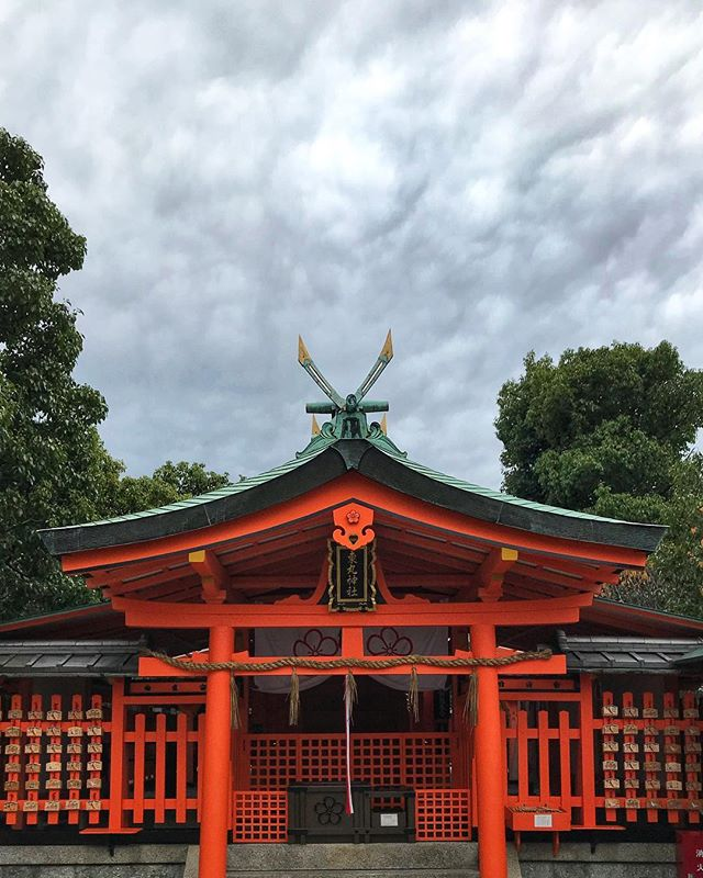 Posting one more before the plane takes off. Someone just dosed themselves in tiger balm. I ain't even mad.  I'm gonna miss this part of the world. . . . . #tigerbalm #itsrainingyen #asiatravelswithfuturewifey #youdimsumyoulosesome #japan #kyoto #shrine #temple #rainclouds #allthehdr