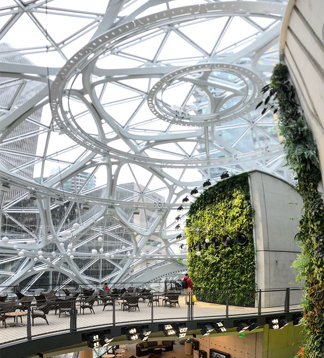 #amazon #thespheres #office #seattle #architecture #biodome #plants #mywork #glass