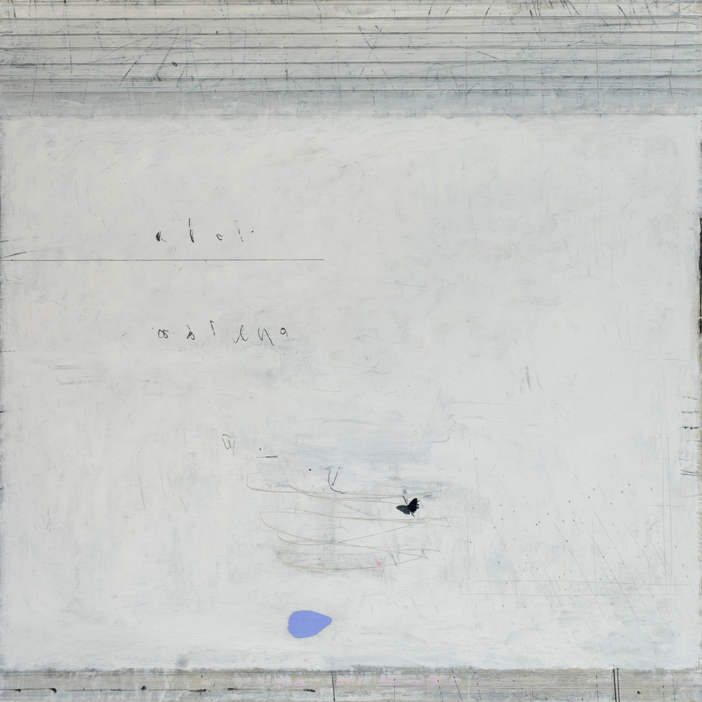 Paul Fry    Airborne I   100 x 100 cm   oil & graphite on canvas   SOLD