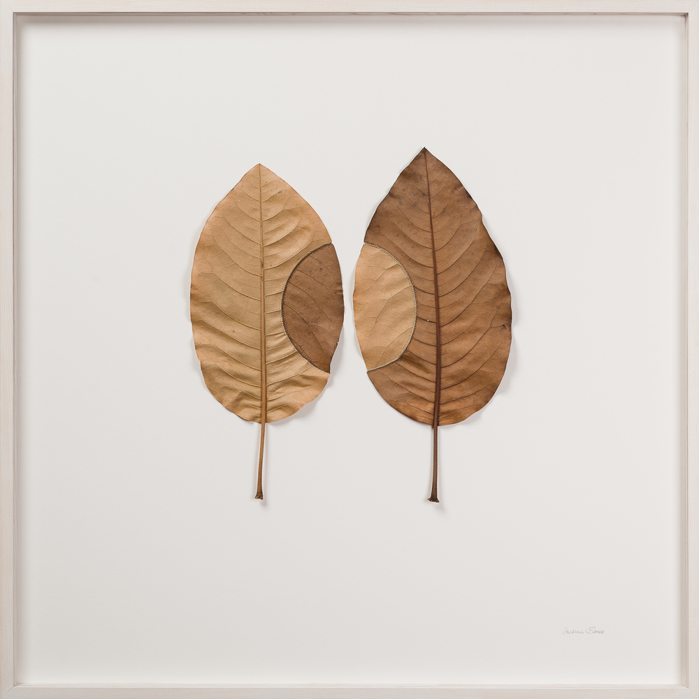 Susanna Bauer Trans-Plant No16 82 x 82 cm magnolia leaves & cotton yarn S O L D