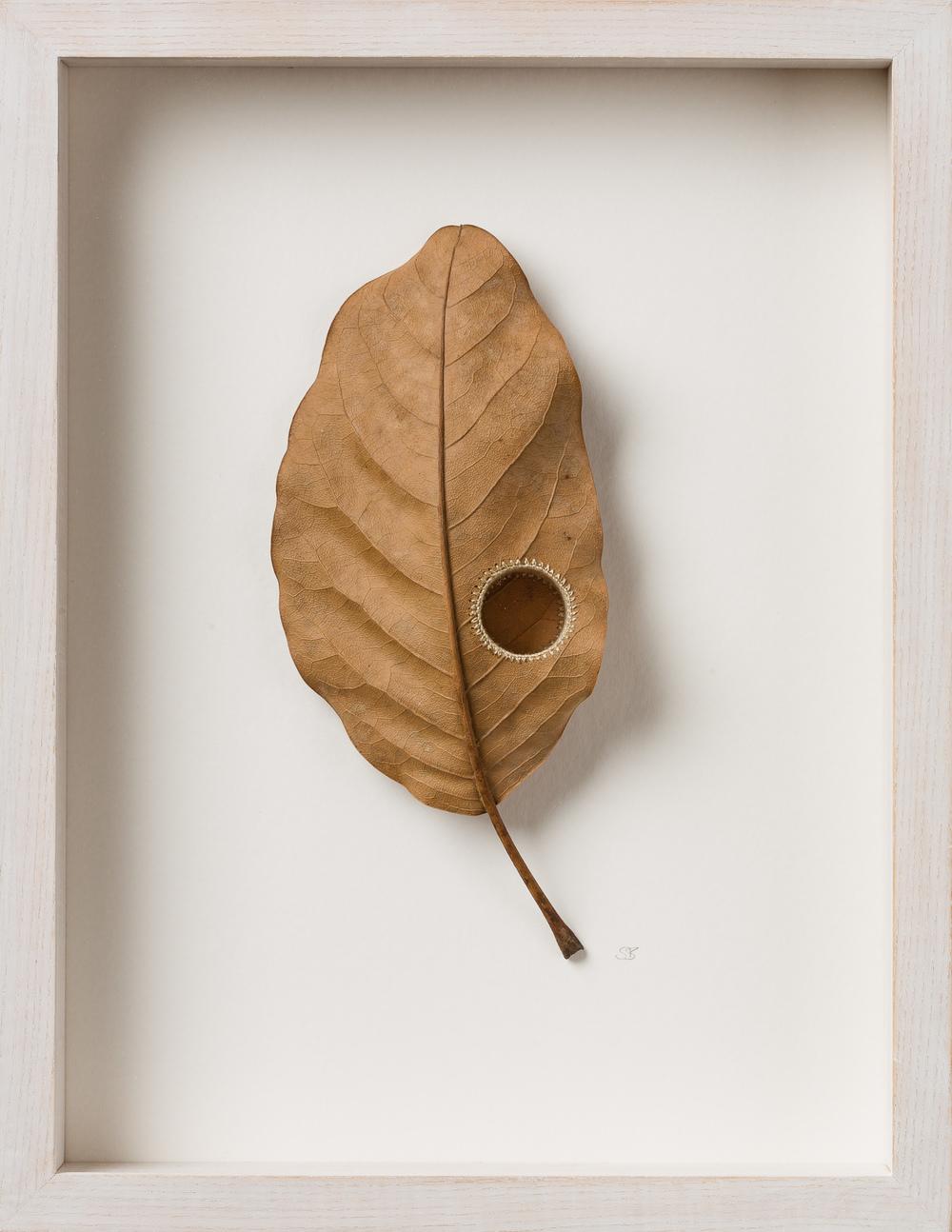 Susanna Bauer Core II 34.2 x 26.3 x 5 cm magnolia leaf & cotton yarn £ 850