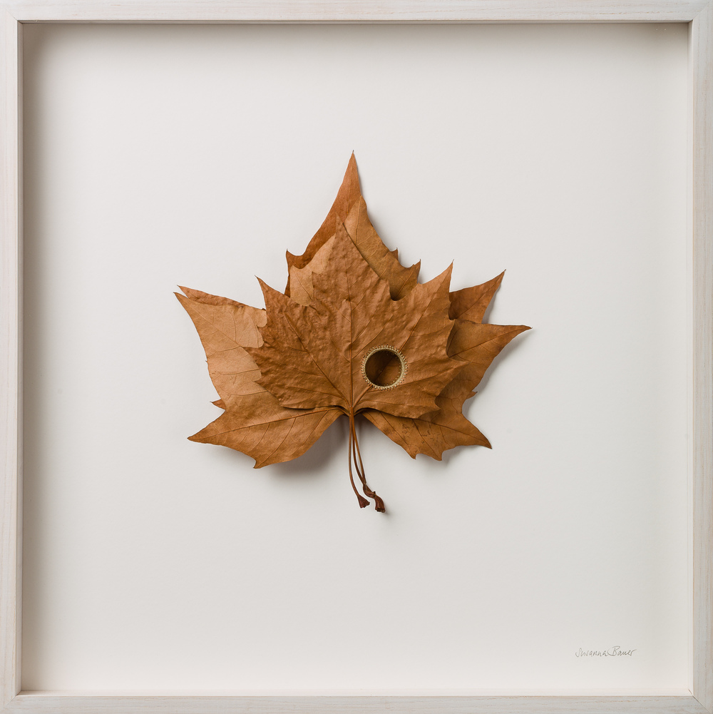 Susanna Bauer Levels 52 x 52 x 5 cm platanus leaves & cotton yarn S O L D