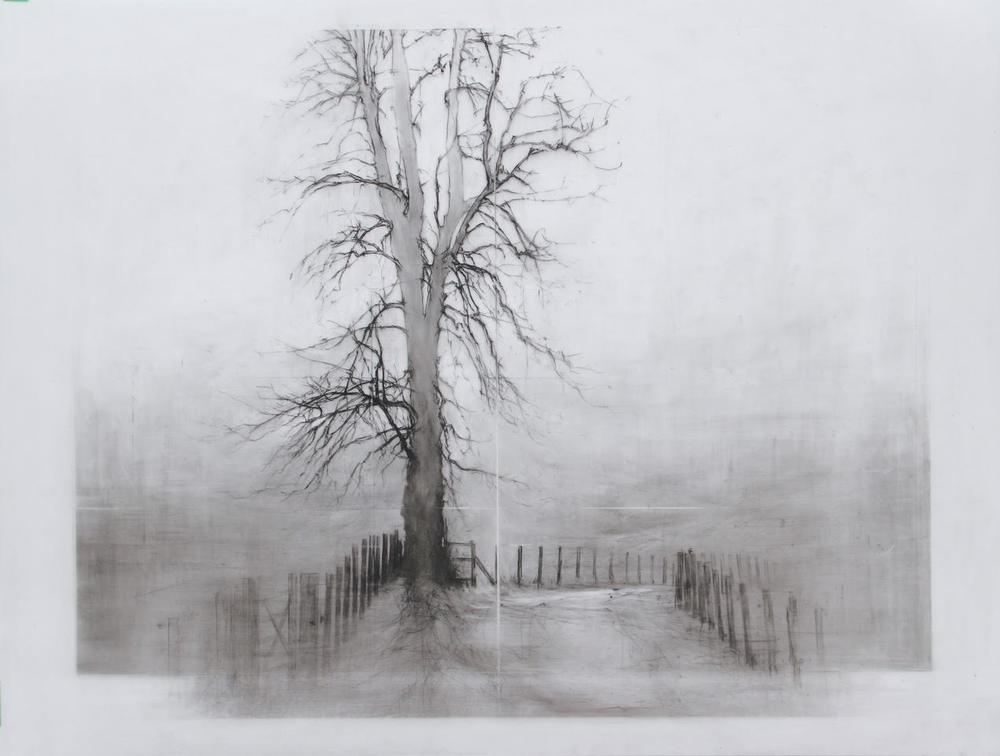 Laurie Steen RWA Home Drawing 12-16 conte & wax pencil on mylar custom white wood gessoed frame  50 x 65 cm £ 1200