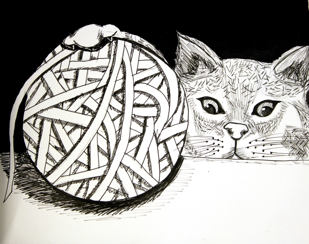Curious Kitten  2012, ink on paper, 6in x 8in
