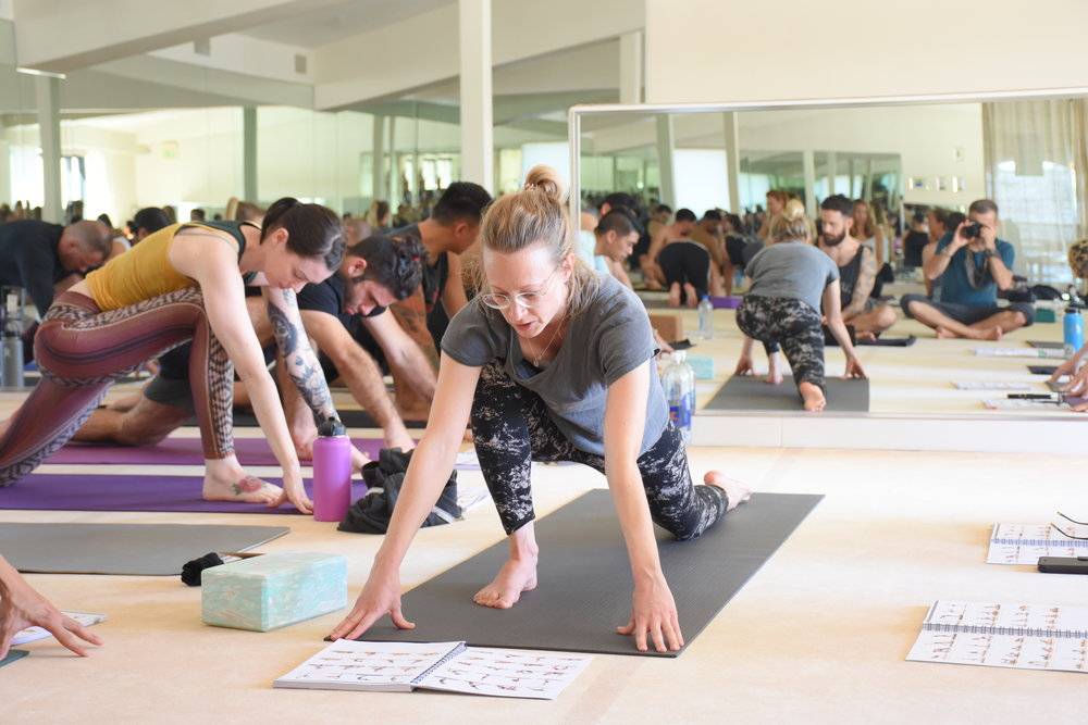 CURRICULUM - + Asana (Yoga Postures):Master the basics to develop a strong practice and guide others –