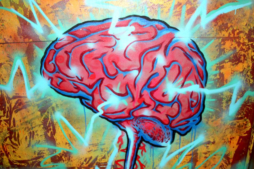 Brain_web2.jpg
