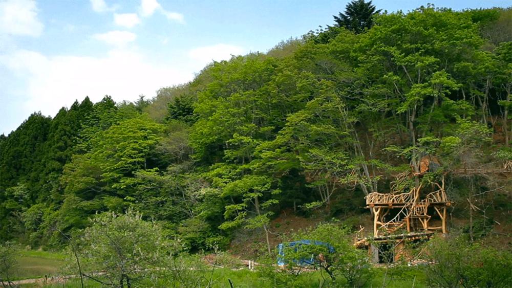 Sendai-treehouse-2.png