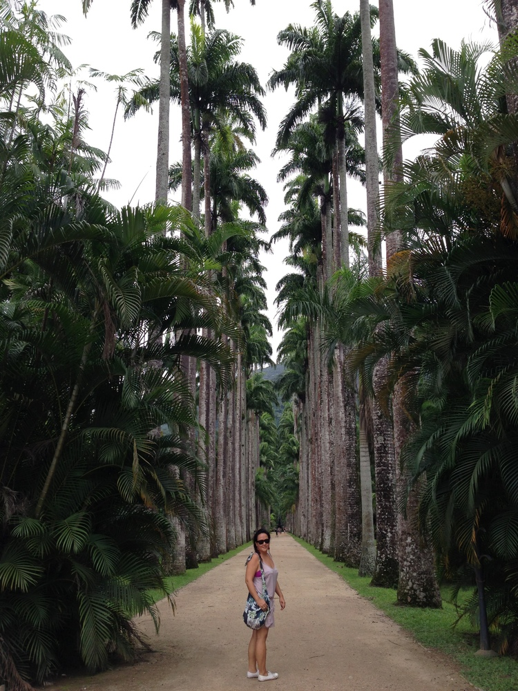 Jardim Botanico, Rio de Janeiro