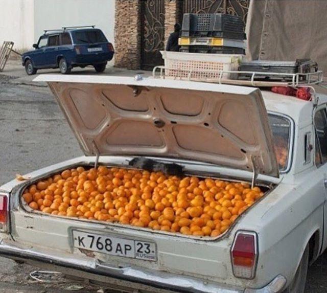 Orange-you glad it's Friday!?