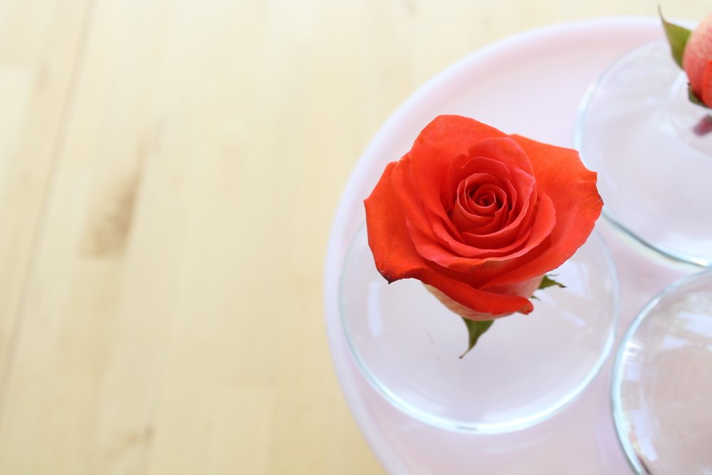 Roses and bud vases