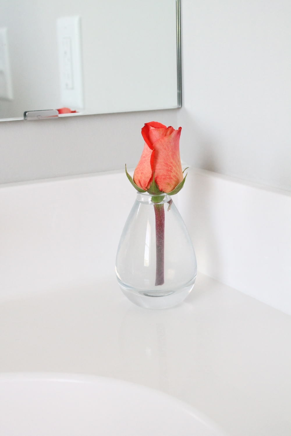 Bud Vase in the Bathroom