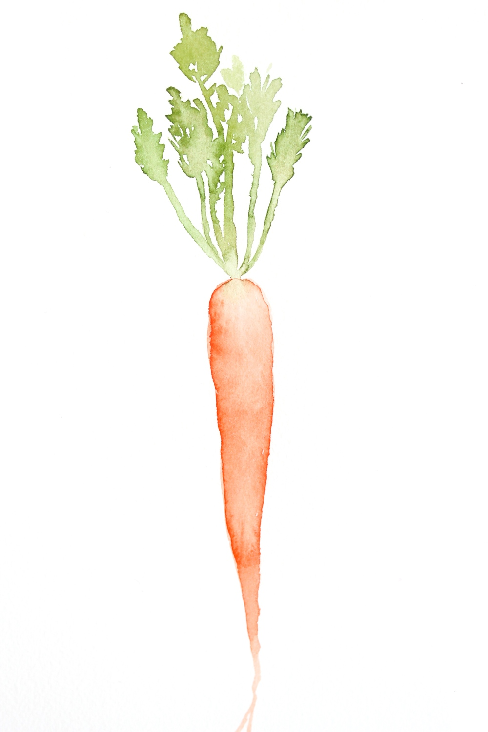 DIY water color carrot for the kitchen.