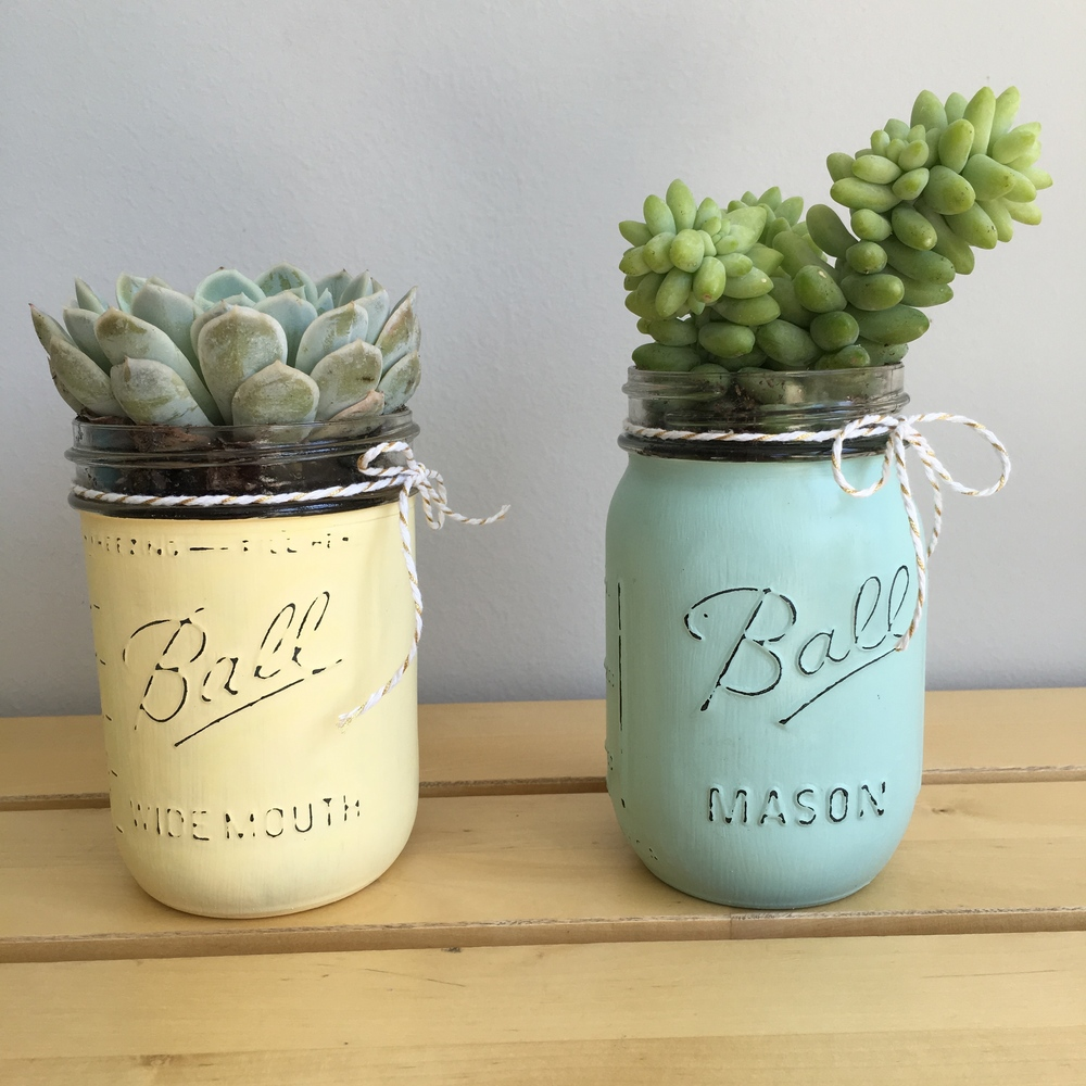 DIY Mother's Day Gift. Chalk Painted Mason Jars with Potted Succulents.