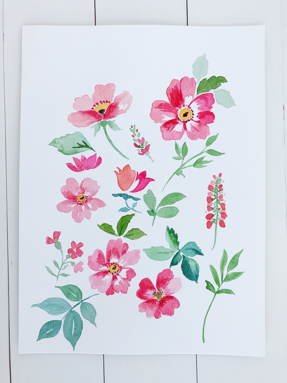 Watercolor flower elements