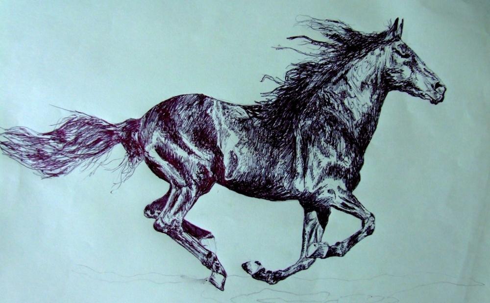 """Horse #2"" (2009)"