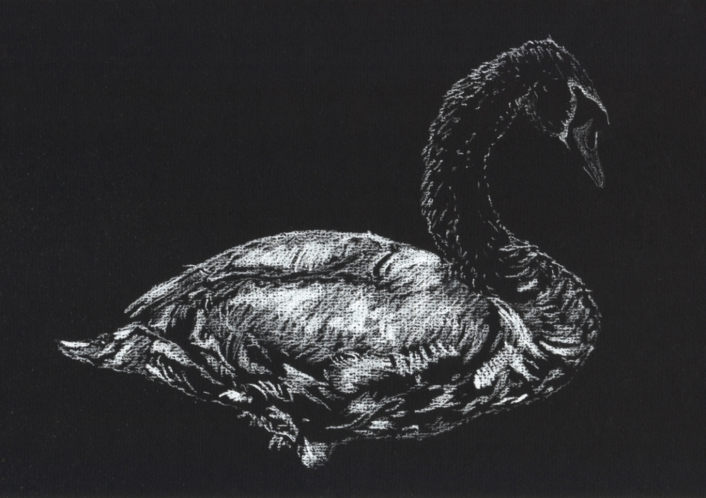 """Mute Swan"" (2015)"