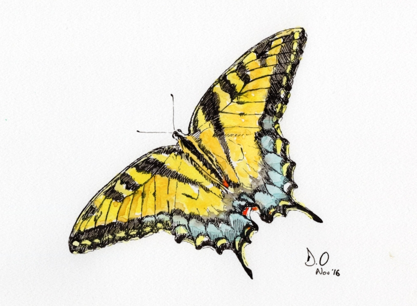 """Swallowtail"" (2016)"
