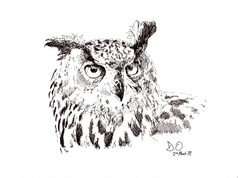 """""""Eagle Owl"""" (2018)"""
