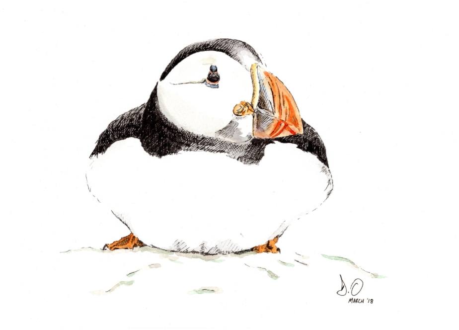 """McGregor's Puffin"" (2018)"