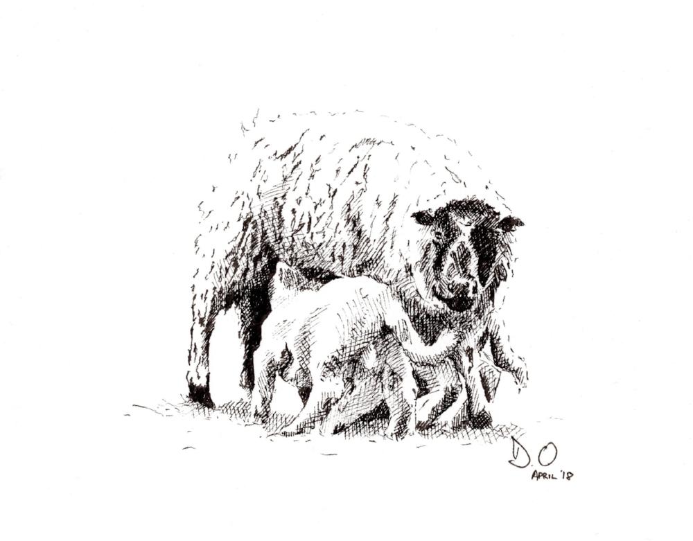 """""""Ewe"""" (2018)"""