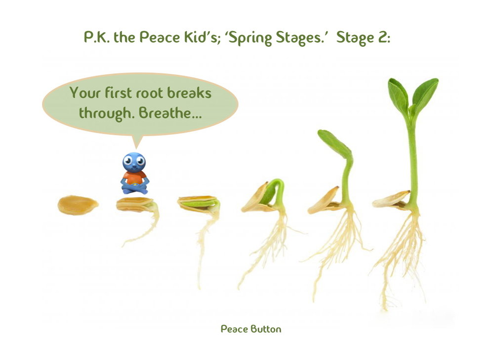 PK's Spring Stages - 2