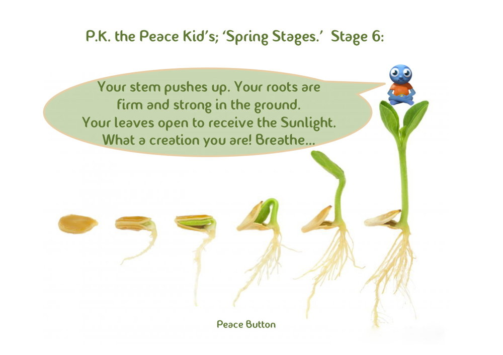 PK's Spring Stages - 6