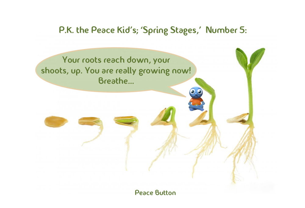 PK's Spring Stages - 5