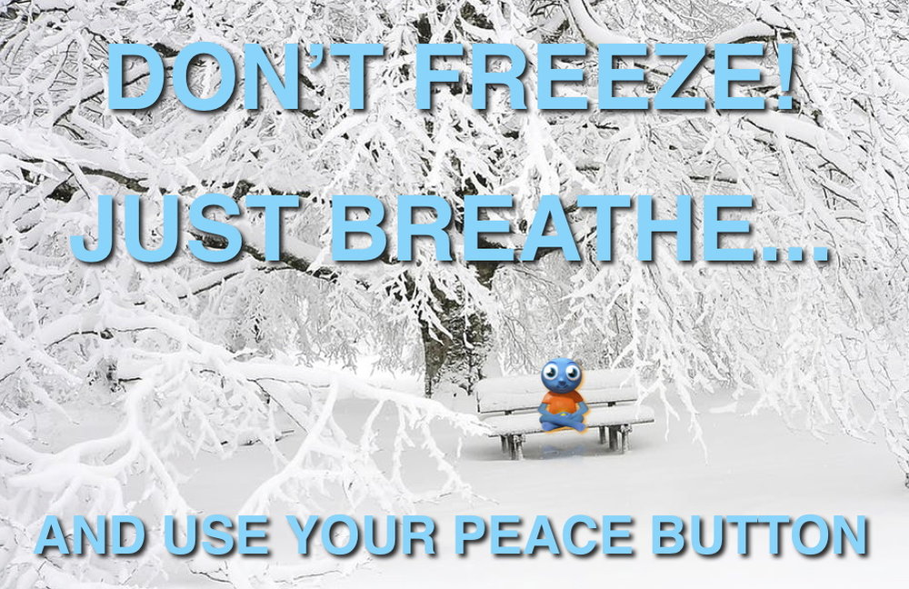 Don't Freeze!