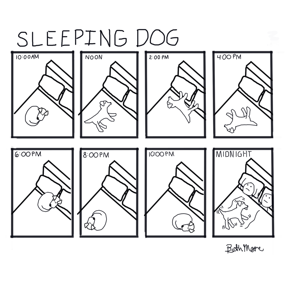 Sleeping dog.png