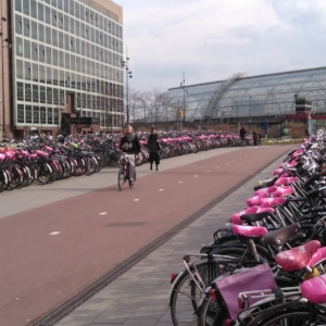 Sustainable Mobility - Urban Cycling Management -