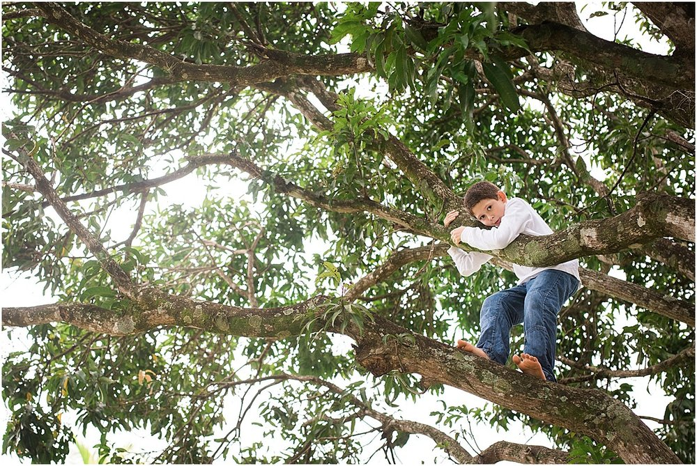 boy climbing a tree at his house in Cuidad Colon, Costa Rica