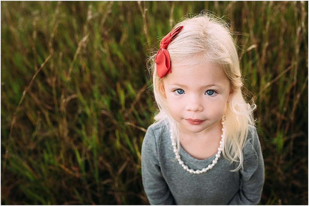 three year old girl portrait | Central Florida Photographer