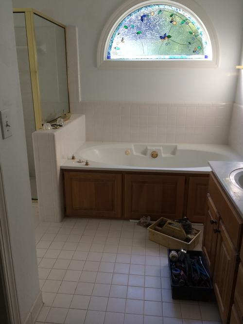 Suburban Renewal - master bath before.jpg