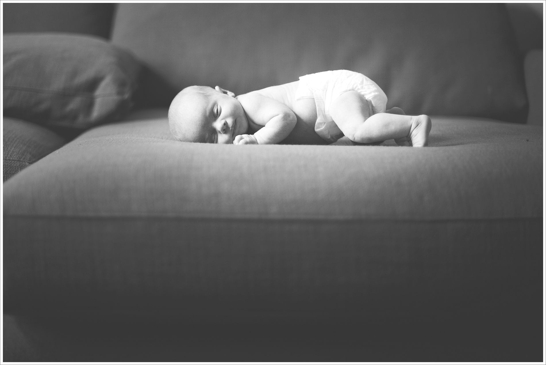 verva photography. newborns