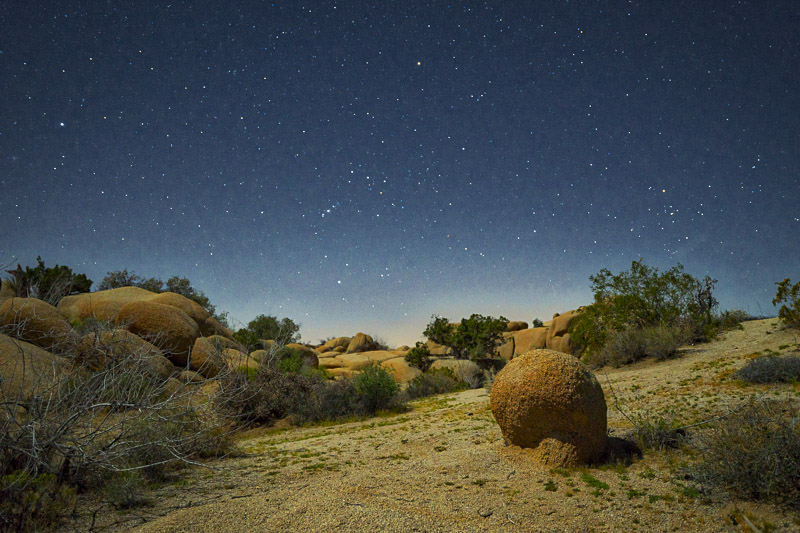 Joshua Tree NP at night