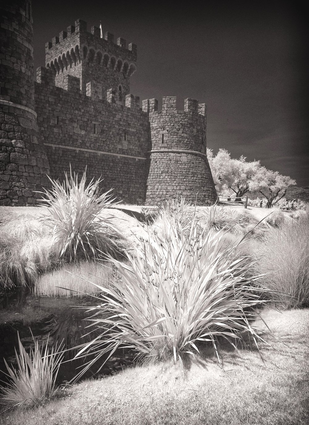 Castello di Amorosa Napa Valley California, Infrared