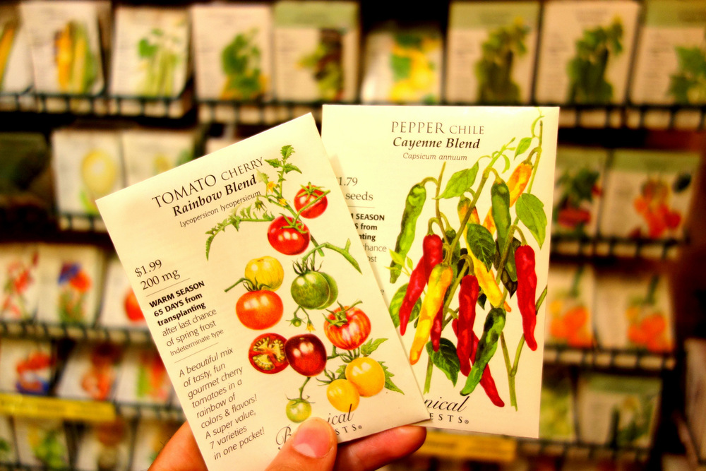 Niko had the idea of stapling seeds to our business cards to plant a seed in the minds of our potential clients about the importance of cultivating one's garden and the potential full circle our business entails. It's a bit late for tomatoes and chiles but we're working on something.