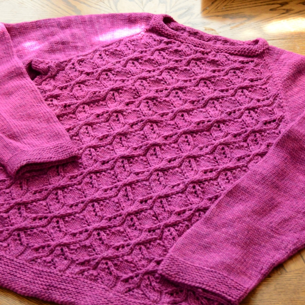 Dragonflies Jumper by prairiegirlsusie