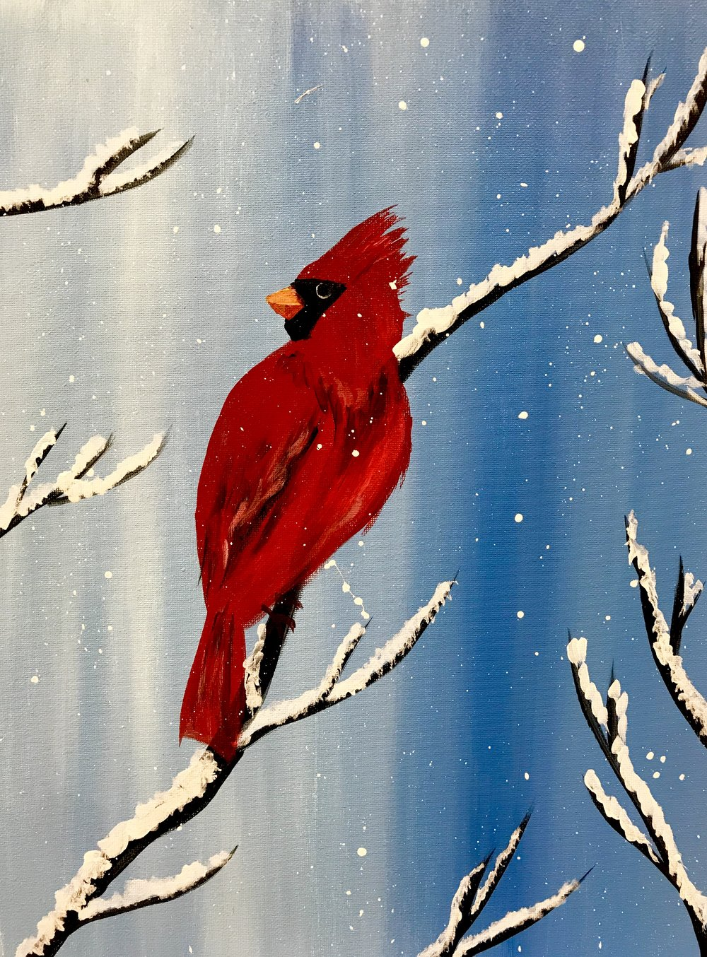 Scarlet in Snow.jpg
