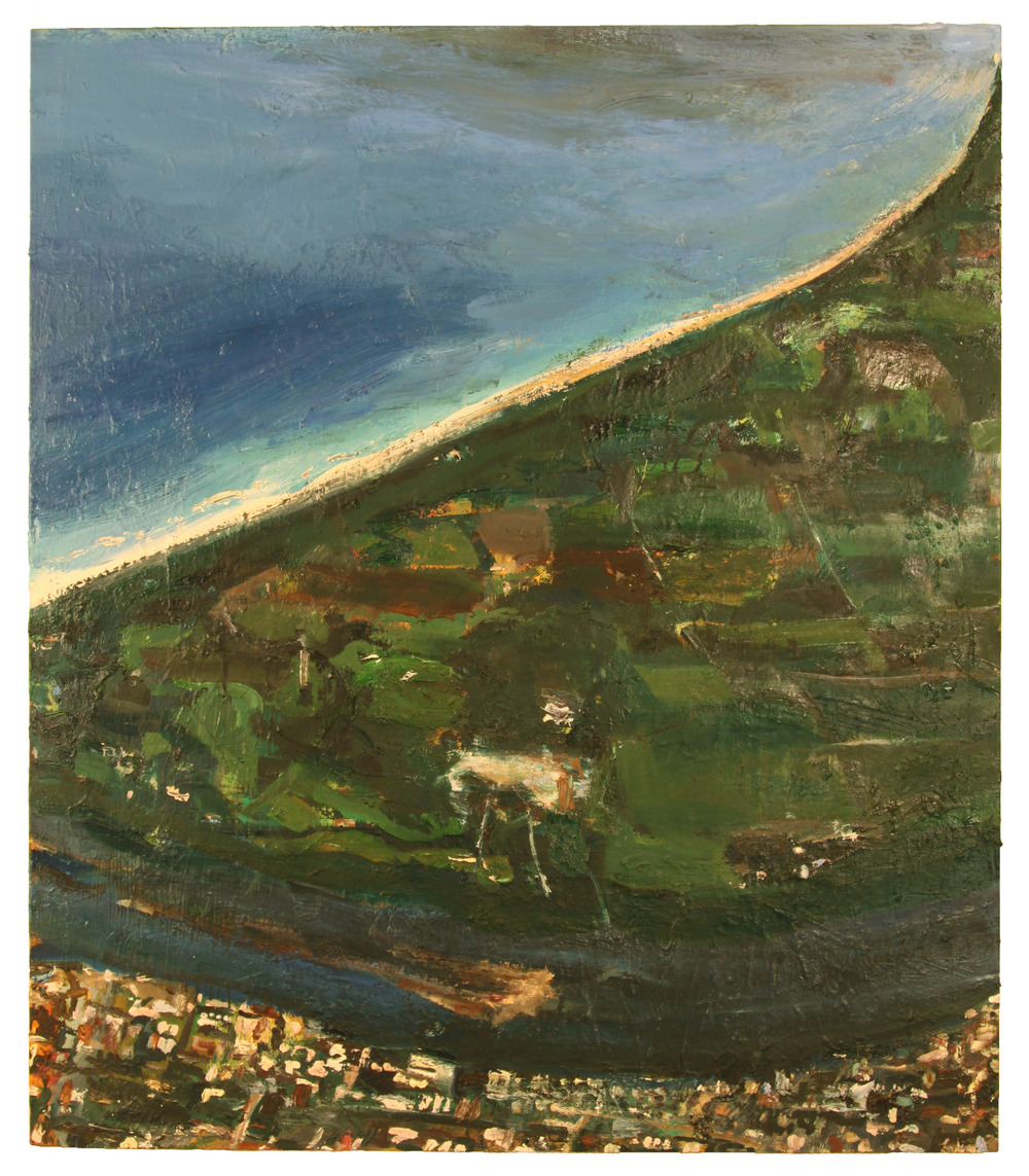 COAST,AUSTRALIA 2008  Oil on canvas  50 1/4 x 43 1/4 inches