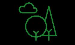 trees_main_page.jpg